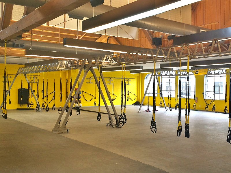 The EXERCISE MACHINE FOR OCCUPATIONS of TRX (TRX-Frame) buy in Kiev