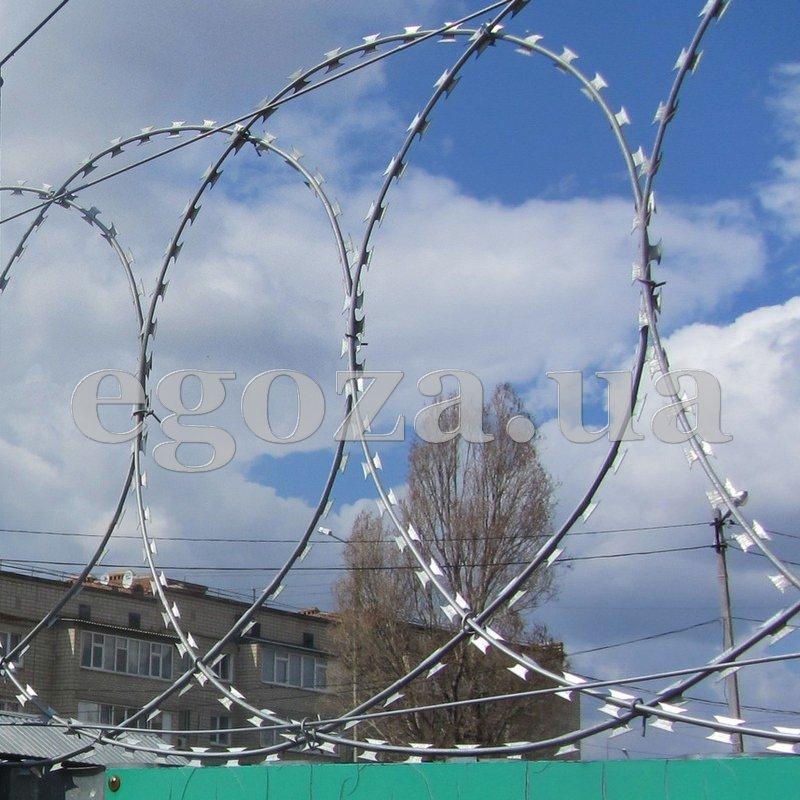 ploskaya_egoza_600_ploskij_barer_bezopasnosti_pbb_diametr_600_mm_iz_kolyuchej_provoloki_egoza_standart