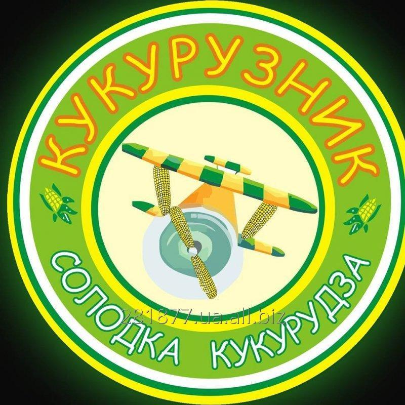 kukurudza_zamorozhena_pochatki_ne_blanshirovan