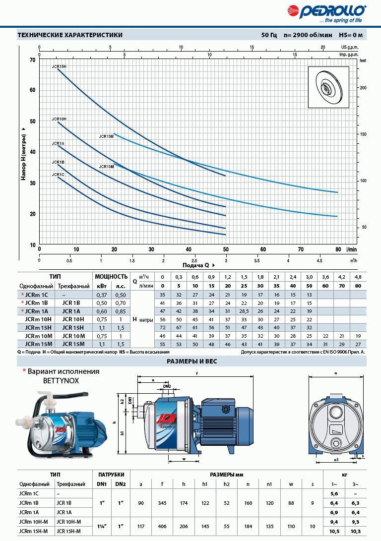 Pump Pedrollo Jcrm 15m Buy In Tysmenitsa Wiring Diagram Nasos