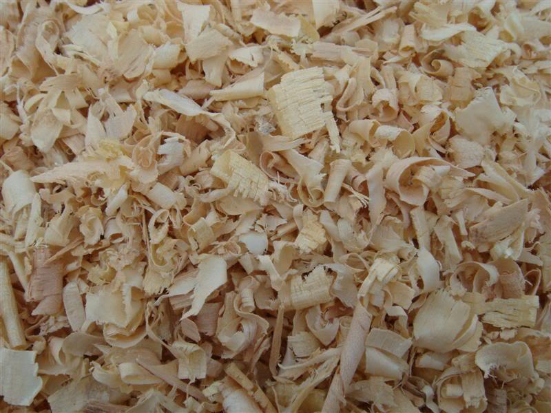 wood_shavings_sawdust_animals