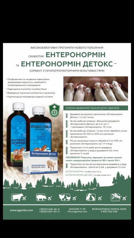 sinbiotik_enteronormin_ekologicheskij_preparat_v