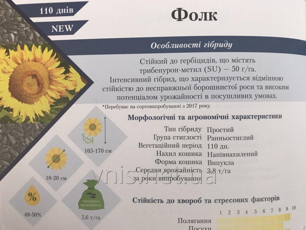podsolnechnik-folk-pod-50gr-granstara-ot-vnis