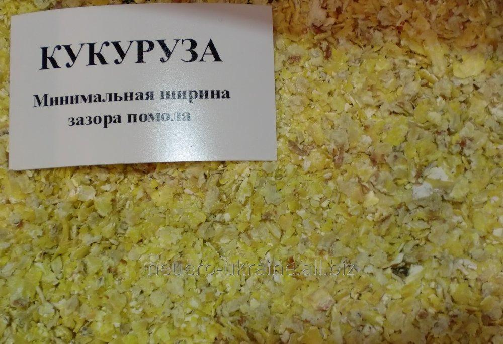 plyushchilki_zerna_iz_germanii