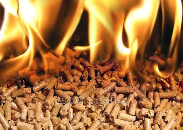 pellety_i_brikety_pellets_and_briquettes