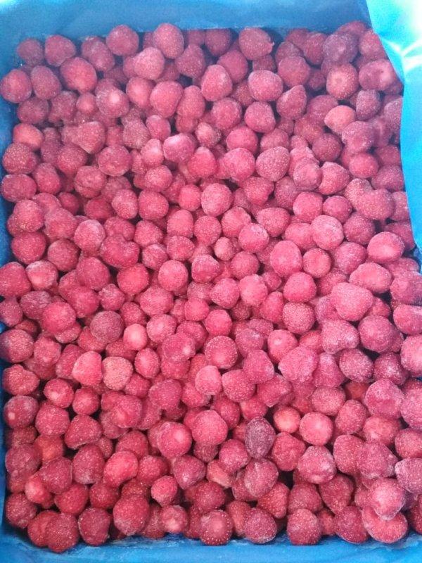 deep_frozen_iqf_strawberry_class_a