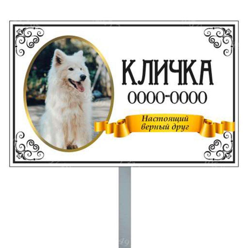 pamyatnik_domashnemu_zhivotnomu_sobake_kotiku