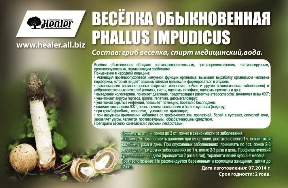 Лечение простатита грибом веселкой отзывы хламидиоз простатит