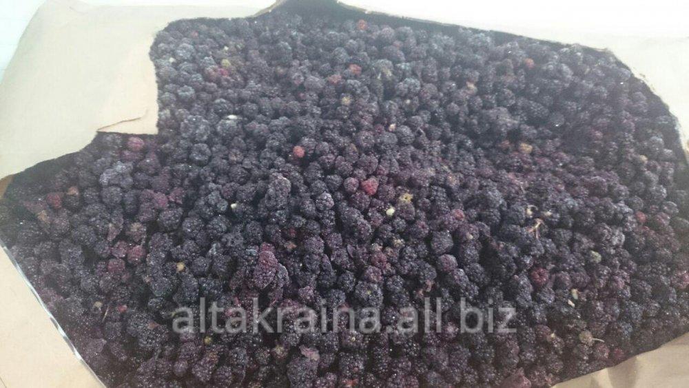 frozen_wild_blackberry_organic
