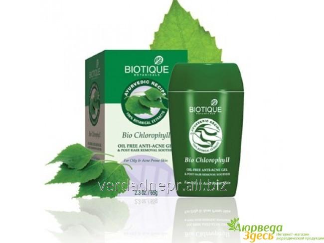 krotivovospalitelnyj-gel-bio-chlorophyll-gel-oil
