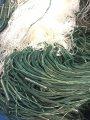 Сеть рыболовная 3 метра высота, 100 метров груз ВШИТ ячейка 55