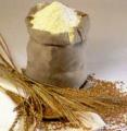Зерновые: кукуруза, пшеница, ячмень, подсолнечник, производство, реализация оптом