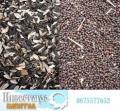 Отходы масличных культур