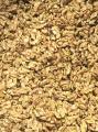 Ядро грецкого ореха - половинки.
