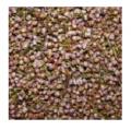 Вереск (соцветия с травой) Сухоцветы, водорастворимая бумага и другие декоративные элементы для изготовления мыла.