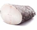 Чилийский сибас (клыкач)