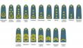 Погони військові