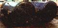 Трубчатка конденсатора 1200 НГ-0,15-6-МТ10/25-3-2 для применения в химической промышленности