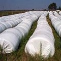 Polymeric sleeves (bags) for storage of grain and forages