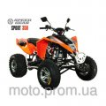 Квадроцикл Speed Gear Sport