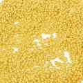 Концевики для шнура латунь, цвет: золото, размер: длина 9.5мм, диаметр 4мм, внутренний диаметр 3.5мм, отверстие 1.2мм, (УТ0018556)