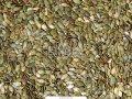 Семечки тыквы белые многоплодные