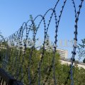 The obstacle flat of a barbed wire, the Flat Fidget, the Flat barrier of safety of PBB diameter is 600 mm from a barbed wire of Egoza-Super