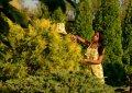 Комбинезон салатовый, арт. 2424006