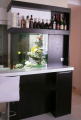 Морской или пресноводный аквариум, встроенный в мебельный гарнитур