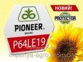 Семена подсолнечника P64LE19 пос.од.