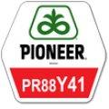 Семена сорго PR88Y41 / ПР88И41 Пионер