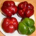 Притавит f1 / pritavit f1 - перец сладкий, seminis 500 семян