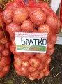 Братко f1 / bratko f1 - лук репчатый, syngenta 250 000 семян
