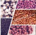 Ягоды замороженные: малина, ежевика, бузина, облепиха, черника, брусника, боярышник