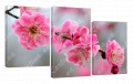 Картина модульная с часами 4 цвет сакуры 4T