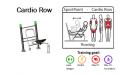 Спортивные тренажеры DENFIT Professional Cardio Row
