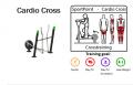 Спортивные тренажеры DENFIT Professional Cardio Cross
