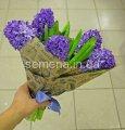 Семена цветов Гиацинт Delft Blue, Артикул УТ000001292