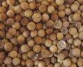 Кориандр посевной (плоды) 50г