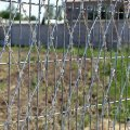 Prickly grid the Piranha 2х6 fence from a barbed wire