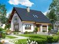 Проект малого дома (до 150 m2) Дом в люцерне 4