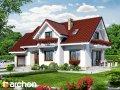 Проект дома оригинальный Дом в лобелиях 2