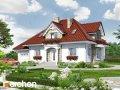 Проект дома оригинальный Дом в каллах