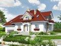 Проект дома оригинальный Дом в каллах (Г2)