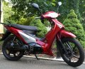 AtMoto Duo-307220 electroscooter of 3 kW, red