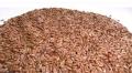 Flax oil, Лен