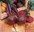 Семена свекла Нобол F1 1 кг Clause (Клоз)