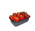 Пинетки контейнеры, лотки для ягоды 500 гр.