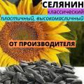 """Насіння соняшнику гібрид Селянин від ТОВ """"АФ НПП АГРОМИР"""""""