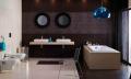 Tile ceramic for a bathroom. A ceramic tile of OPOCZNO - the Collection - ZEBRANO